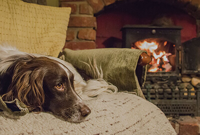 Light My Fire: What are Twizler Wood Wool Firelighters?